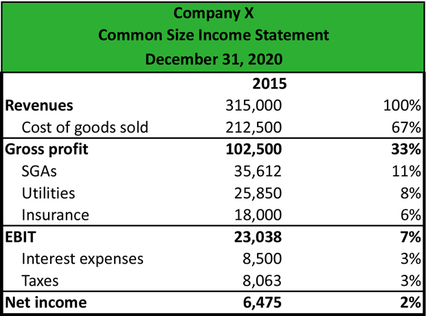 Common Size Income Statement Example  Loss Profit Statement