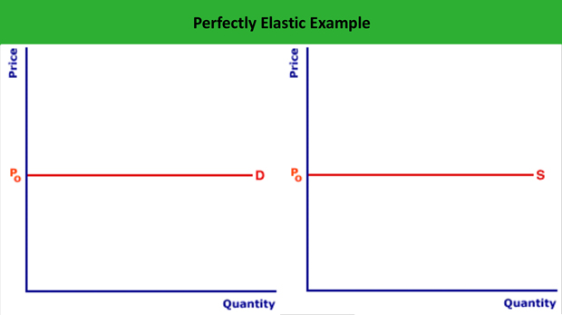 Perfectly Elastic Demand Curve Example