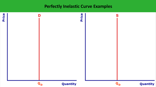 Perfectly Inelastic Demand Curve